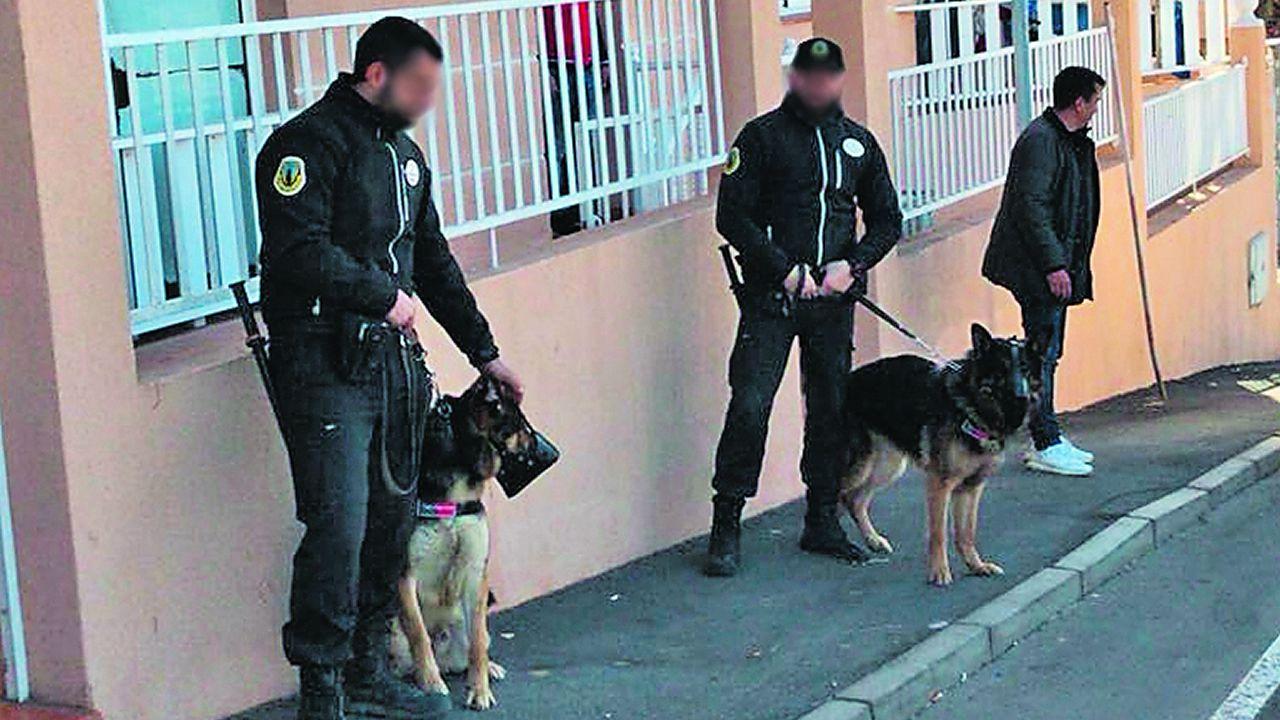 Los perros Antiokupas llegan para desalojar