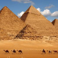 Egipto con perro