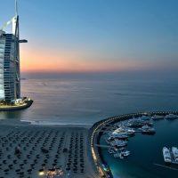 Emiratos Arabes con perro