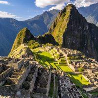Peru con perro