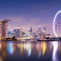 Singapur con perro